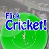 Flick Cricket