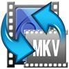 MKV Converter extract mkv