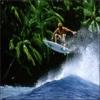 Surfing Survival!