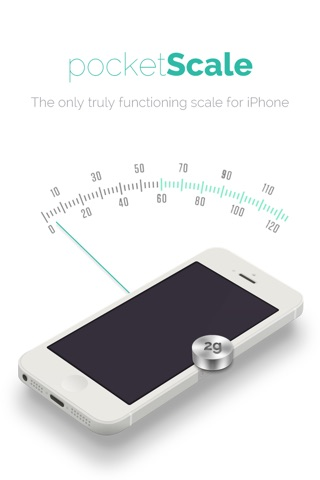 Balance - pocket scale screenshot 1