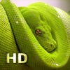 iSnakes HD