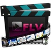 FLV-Converter flv to wmv