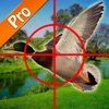 Duck Hunting pro free gamer for master hunters.