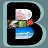 B_Plate5