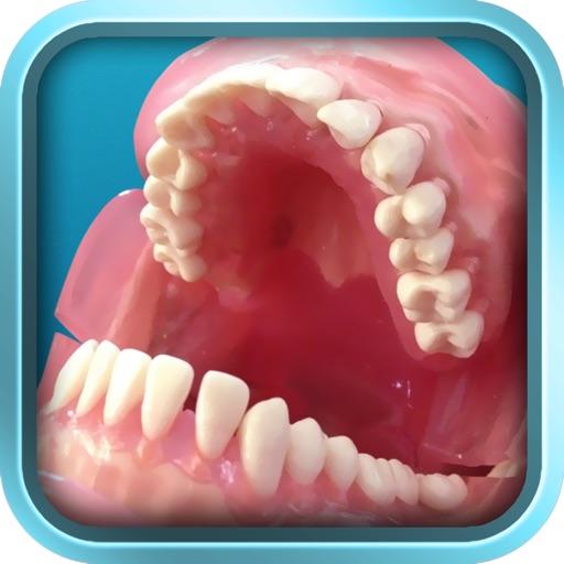 智能牙位图pro