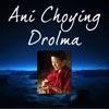Ani Choying Drolma Profile