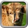 Cute baby farm animal puzzle