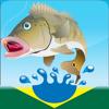 Guia Pesca