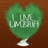 I live Umbria