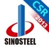 中国中钢集团2013年可持续发展报告