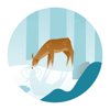 Wildfulness - Unwind in nature and calm your mind with nature sounds and illustrations