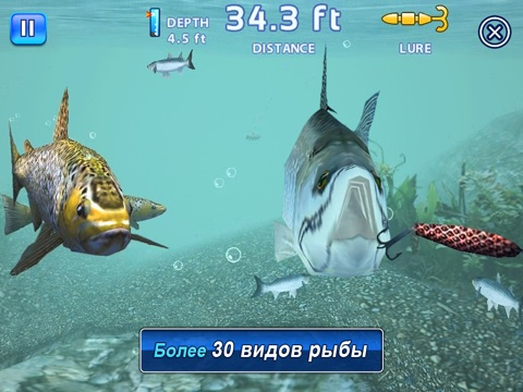 Скачать Fishing Kings Free+