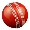 Live Cricket Scores & News
