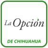 Daniel Muela - La Opción  artwork