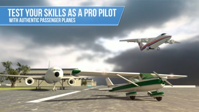 Plane Simulator PRO -... screenshot1