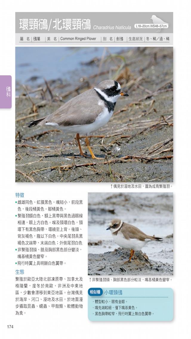 download 台灣水鳥圖鑑 apps 2
