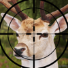 PRO Deer Hunting Simulator 2017 Wiki