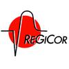 REGICOR CARDIOVASCULAR RISK ESTIMATION