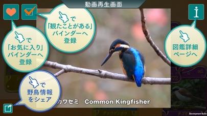 GPS動く野鳥図鑑400 screenshot1