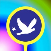 Best Flying Endless Dove Game for Kids and Toddler
