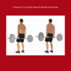 download Forearm curl exercises and workout routine