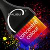 Concentr8 Colour