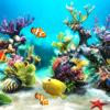 Aquarium Wallpapers   Backgrounds
