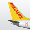 Pegasus Airlines - Cheap Flights