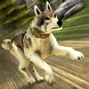 Wolf Simulator 2017 . Wolves Running Game vs Dogs