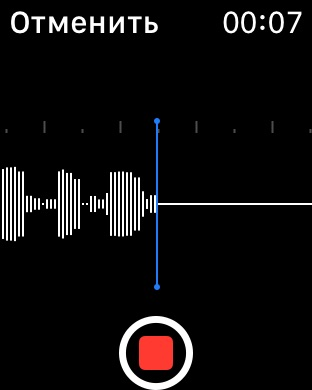 Заметки PRO - диктофон Screenshot