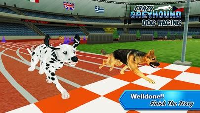 Crazy Greyhound Dog RacingСкриншоты 3