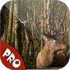 Easy Deer Hunting Calls Pro: Finest Hunting Calls