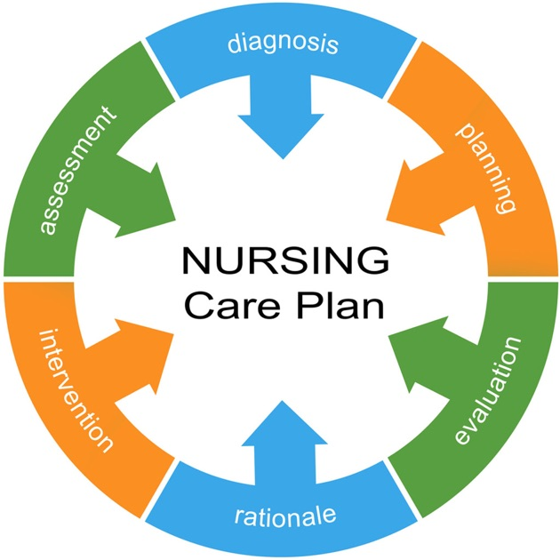 Nursing Care Plan Nanda Tables On The App Store