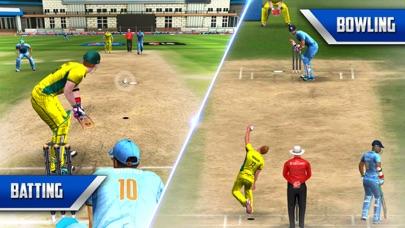 ICC Pro Cricket 2015-3