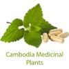 ANT Khmer Medicinal Plants App