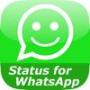 Statut pour WhatsApp