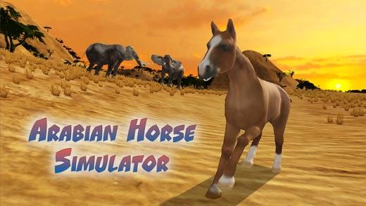 Arabian Horse Simulator Full Screenshot