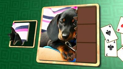 Jigsaw Solitaire Baby Animals screenshot 1