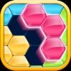 Block! Hexa Puzzle logo