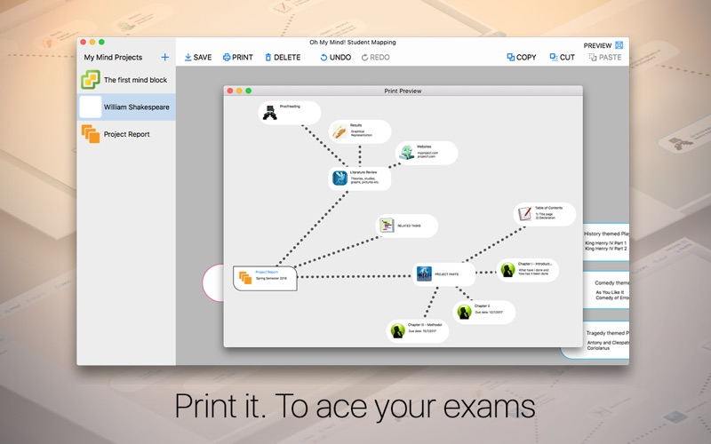 Oh My Mind Student Mapping Screenshot - 3
