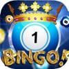 Billionaire Master Bingo Machine – New Lucky Beano