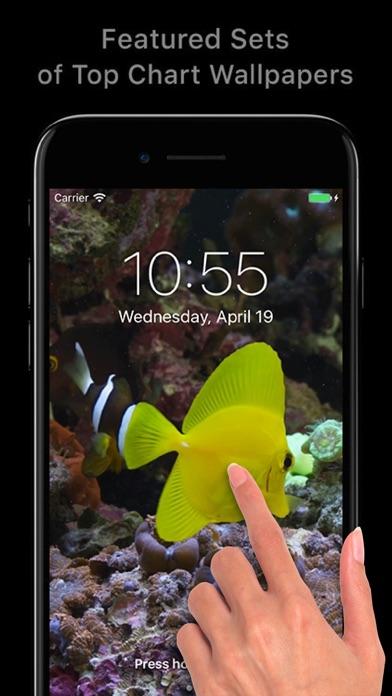 392x696bb 2017年10月21日iPhone/iPadアプリセール プリズム壁紙コレクションアプリ「Prism Your Screen」が無料!