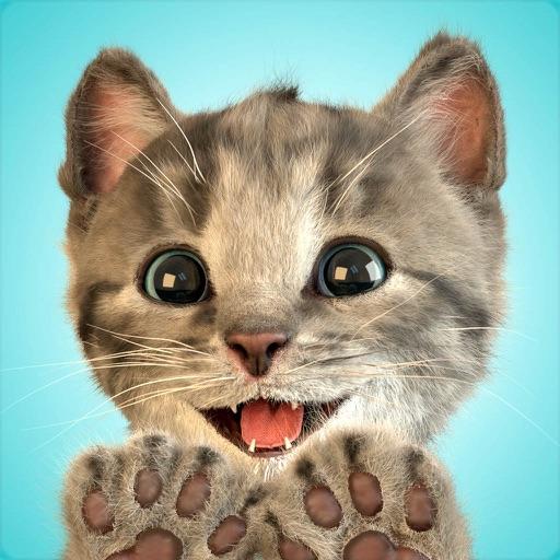 Маленький котенок - мой любимый кот
