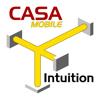 CASA Intuition