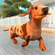 My Pet Escape: Rescue the Dog!