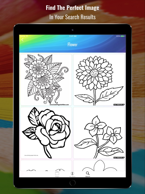 Coloring Book - Search and Color-ipad-3