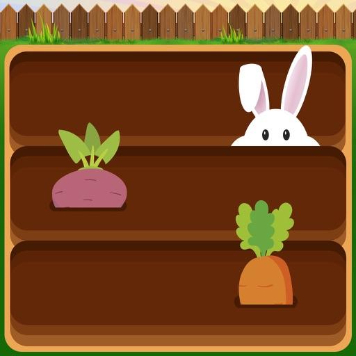 Pull The Carrot iOS App