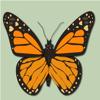 Butterflies & Dragonflies Wiki