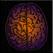 DualBrain+  Brain Training