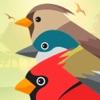 Reclamos de Pájaros PRO